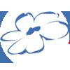 Nationaal Ouderen Fonds - logo